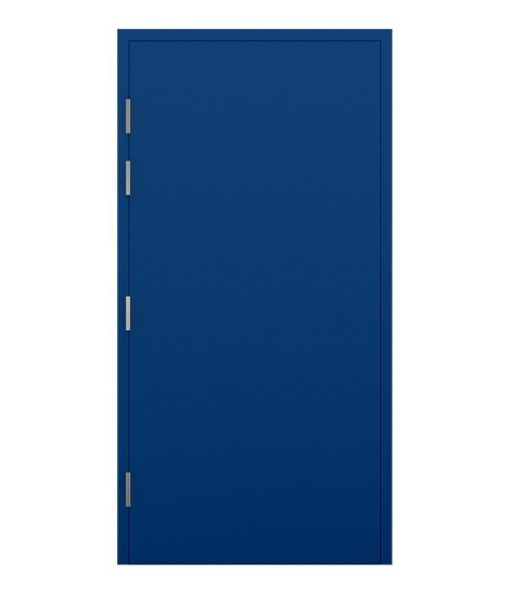 Cobalt Blue Security Fire Exit Door, Closed, External View