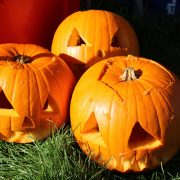 Picture of 3 pumpkins that have been carved in Tividale Park