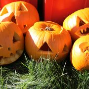 Variety of pumpkins carved at the Let's Play Sandwell session at Tividale Park